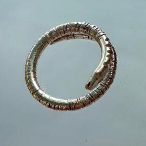 19-37-sandra-dini-anello